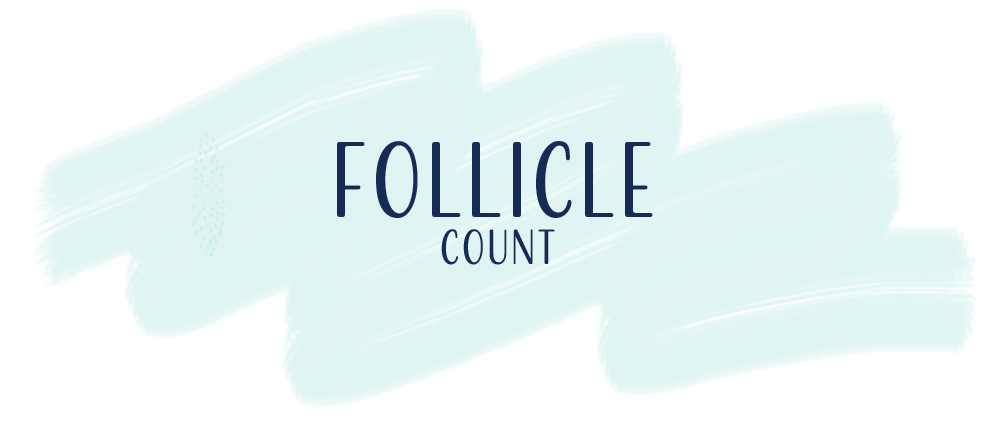 We Have Follicles! – THE HOUSE OF SULLIVAN